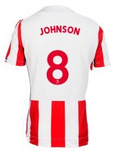 Stoke City Jersey 2017/18 Home Soccer Shirt Jersey #8 Johnson