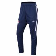 Red Bull Jersey 2017-18 Soccer Training Pants