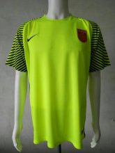 China Jersey 2016/17 Green Goalkeeper Soccer Shirt
